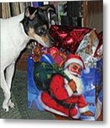 What Did Santa Bring Me Metal Print