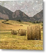 What The Hay Metal Print