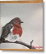 What Will The Robin Do Then Metal Print