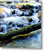What's Your Rush? Metal Print