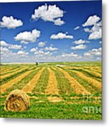 Wheat Farm Field And Hay Bales At Harvest In Saskatchewan Metal Print