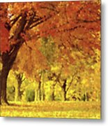 When Autumn Leaves Fall Metal Print