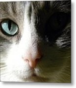 When I Look In Your Eyes.... Metal Print