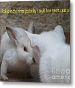 When I Looked In The Mirror Yesterday Metal Print