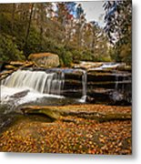 When Leaves Have Fallen Metal Print