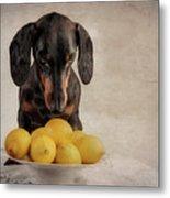 When Life Gives You Lemons... Metal Print
