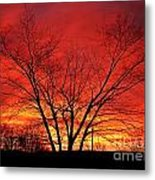 When Morning Guilds The Skies Metal Print