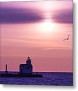 When The Deep Purple Falls Metal Print