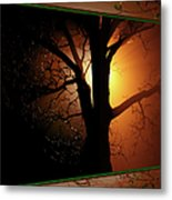 Where Have All The Flowers Gone-featured In Harmony And Happiness-naturephoto-visions Of The Night  Metal Print