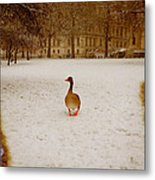Where Is Everyone Metal Print by Jasna Buncic
