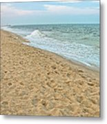 Where Seagulls Walk Metal Print by Colleen Kammerer
