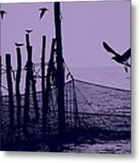 Where The Fish Are Metal Print