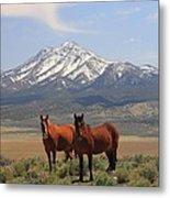 Where The Mustangs Roam Metal Print