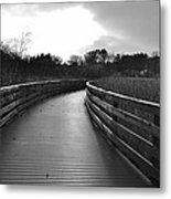 Where The Path Leads You Metal Print