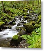 Where The Song Flows Into A Dream  Metal Print