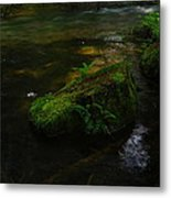 Where The Water Is As Slow As Tranquility Metal Print