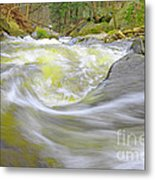 Whirlpool In Forest Metal Print