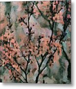 Whispering Cherry Blossoms Metal Print by Janice MacLellan