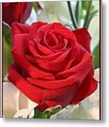 Whispers Of Passion And Love Red Rose Greeting Card  Metal Print