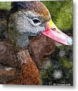Whistling Duck Metal Print