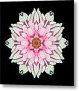 White And Pink Dahlia I Flower Mandala Metal Print