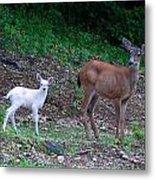 White Angel And Mom II Metal Print