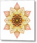 Asiatic Lily II Flower Mandala White Metal Print