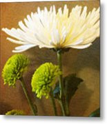 White Autumn Metal Print