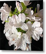 White Azalea Bouquet In Glass Vase Metal Print
