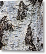 White Birch Abstract  Metal Print