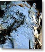 White Birch Log Metal Print