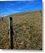 Appalachian Trail White Blaze Post Metal Print