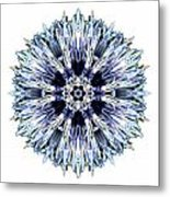 Blue Globe Thistle I Flower Mandala White Metal Print