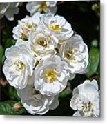 White Bouquet Metal Print