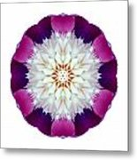 Bowl Of Beauty Peony II Flower Mandala White Metal Print