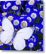 White Butterfly In Blue Flowers Metal Print