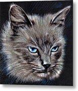 White Cat Portrait Metal Print