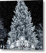 White Christmas In Texas Metal Print