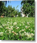 White Clover Field And The Playground Metal Print