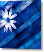 White Daisy On Blue Two Metal Print