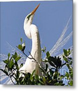White Egret In Spring Metal Print
