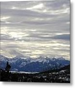 White Excellence Of Winter Metal Print
