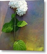 White Glory Metal Print by George  Page