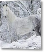 White Horse In The Snow Metal Print