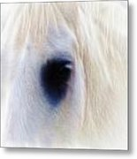 White Horse Look Metal Print