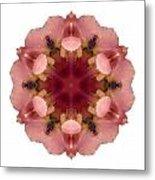 Iris Germanica I Flower Mandala White Metal Print