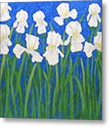 White Irises Metal Print