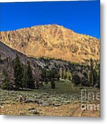 White Knob Mountain Peak Metal Print