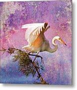 White Lake Swamp Egret Metal Print by J Larry Walker