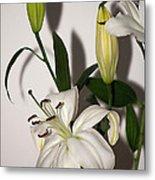White Lily Spray Metal Print